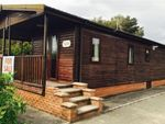 Thumbnail to rent in Solway Holiday Village, Silloth
