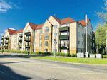 Thumbnail to rent in Alexander Grove, Bearsden, Glasgow