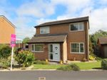Thumbnail for sale in Glentworth Close, Oswestry
