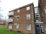 Thumbnail to rent in Firshill Walk, Sheffield