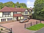 Thumbnail to rent in The Limes, Felbridge, East Grinstead