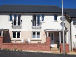 Thumbnail to rent in Younghayes Road, Cranbrook, Exeter