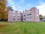 Thumbnail to rent in Heathside, Weybridge