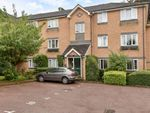 Thumbnail for sale in Hedingham Mews, Maidenhead