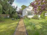 Thumbnail to rent in Westwood Road, Windlesham