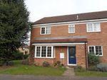 Thumbnail to rent in The Rowans, Milton, Cambridge