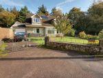 Thumbnail for sale in Prosper Lane, Coalway, Coleford, Gloucestershire.