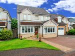 Thumbnail to rent in Blackthorn Grove, Menstrie