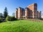 Thumbnail to rent in Penhurst Road, Penshurst, Tonbridge