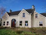 Thumbnail to rent in Bridge Road, Moira, Craigavon