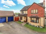 Thumbnail for sale in Frowd Close, Fordham, Ely