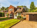 Thumbnail to rent in Pine Tree Hill, Pyrford, Woking