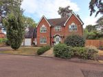 Thumbnail for sale in The Alders, West Byfleet
