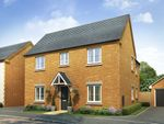 """Thumbnail to rent in """"The Ludlow"""" at Lodge Road, Cranfield, Bedford"""