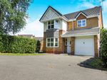 Thumbnail for sale in Balfour Grove, Stafford