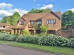 Thumbnail for sale in Barberry Way, Blackwater, Camberley
