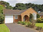 Thumbnail to rent in Neacroft Close, New Milton