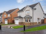 Thumbnail for sale in Lochnagar Road, Motherwell, North Lanarkshire, United Kingdom