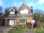 Thumbnail for sale in Echo Hill, Royston