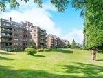 Thumbnail to rent in Lythe Hill Park, Haslemere