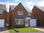 """Thumbnail to rent in """"Cheadle"""" at Livingstone Road, Corby"""