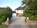 Thumbnail for sale in Great Baddow, Chelmsford, Essex