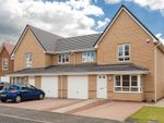 "Thumbnail to rent in ""Balvenie"" at Coltswood Road, Coatbridge"