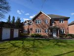 Thumbnail to rent in Fern Place, Farnborough