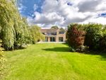 Thumbnail for sale in Warkton Lane, Barton Seagrave, Kettering