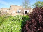 Thumbnail for sale in Mildenhall Road, Fordham