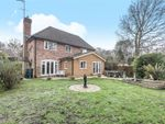 Thumbnail for sale in Pyrian Close, Woking