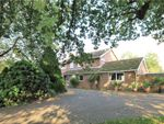 Thumbnail for sale in Bulkeley Close, Englefield Green, Surrey