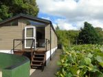 Thumbnail to rent in Wyelands Park, Lower Lydbrook, Lydbrook