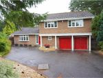 Thumbnail for sale in Hill Way, Ashley Heath, Ringwood