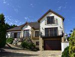 Thumbnail to rent in Coed Y Bronallt, Hendy, Pontarddulais