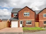 Thumbnail for sale in Plot 74 Leith House Type, Bishopton