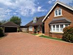 Thumbnail for sale in Rufwood, Crawley Down, Crawley