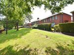 Thumbnail for sale in Hazel Road, Wonford, Exeter