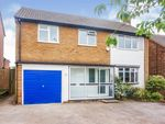 Thumbnail for sale in Hamilton Road, Redditch