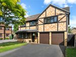 Thumbnail for sale in Fennel Close, Farnborough, Hampshire