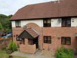Thumbnail to rent in Alexandra Glen, Walderslade, Chatham