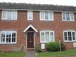 Thumbnail to rent in Hermitage Close, Westbury, Shrewsbury