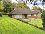 Thumbnail for sale in Stonehouse Road, Halstead, Sevenoaks, Kent