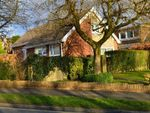 Thumbnail to rent in Sycamore Close, Swansea