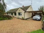 Thumbnail for sale in Ely, Cambridgeshire
