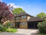 Thumbnail for sale in Henley Drive, Camberley
