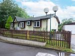 Thumbnail for sale in Forest Lane, Tadley