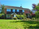 Thumbnail to rent in Harborough Road North, Northampton