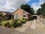 Thumbnail for sale in Borton Road, Blofield Heath, Norwich