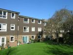 Thumbnail to rent in Brookside Avenue, Polegate